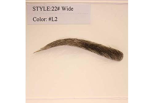 Style 22 L2