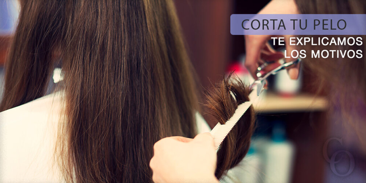 Motivos de por qué es bueno cortar tu pelo